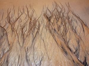Arte onirica a beira mar_1