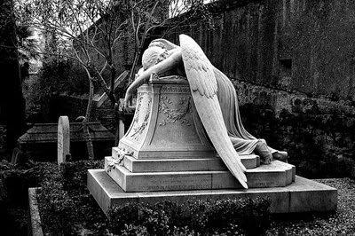 anjo caido